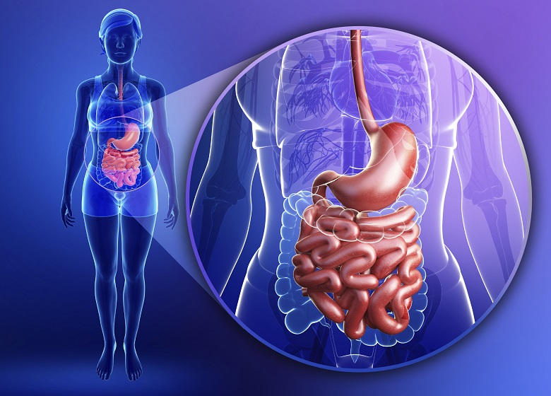 Заболевания системы пищеварения